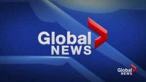 Global News at 5 Lethbridge: Apr 8